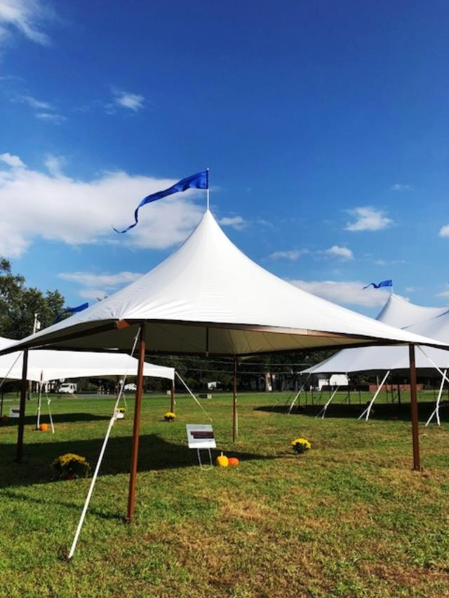 Where to find STILLWATER, 24x24, FRAME TENT in Canton
